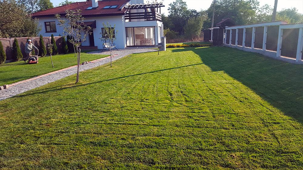 Озеленяване - Зелен свят