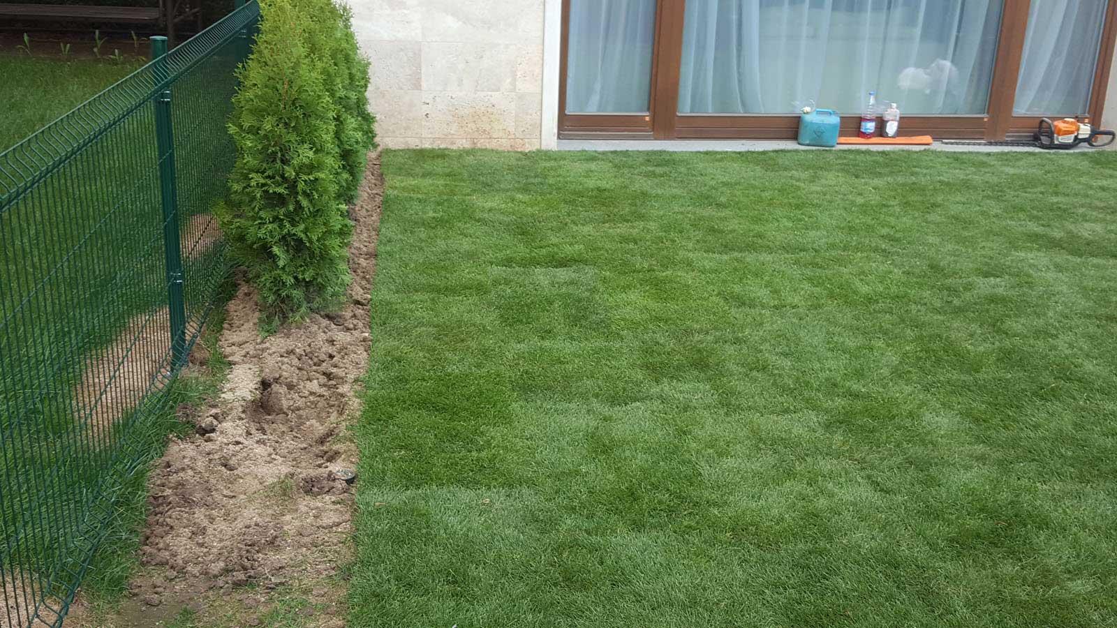 Зелен свят - озеленяване