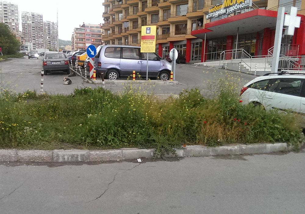 """Мебелен салон """"Мондо"""", гр. Варна - нов обект"""